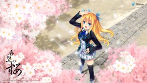Rating: Safe Score: 111 Tags: aizawa_hikaru blonde_hair blue_eyes cherry_blossoms flowers microsoft os-tan petals shinia thighhighs User: w7382001