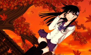 Rating: Safe Score: 94 Tags: autumn black_hair jpeg_artifacts leaves long_hair red_eyes ribbons sanka_rea sankarea seifuku skirt thighhighs tree User: C4R10Z123GT