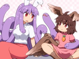 Rating: Safe Score: 20 Tags: 2girls animal brown_hair dress fang inaba_tewi long_hair necklace purple_hair red_eyes reisen_udongein_inaba shirosato short_hair skirt snake touhou wings User: otaku_emmy
