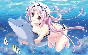 Rating: Safe Score: 177 Tags: animal barefoot bikini dolphin fish garden_(galge) pink_hair swimsuit water yuyi User: opai