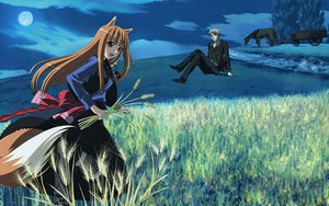 Rating: Safe Score: 41 Tags: animal animal_ears clouds craft_lawrence dress grass gray_eyes gray_hair horo horse landscape long_hair moon ookami_to_koushinryou orange_hair red_eyes scenic short_hair sky tail wolfgirl User: Pilop