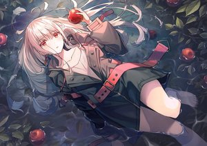 Rating: Safe Score: 84 Tags: apple blush food fruit gray_hair hoodie koh_rd long_hair original red_eyes water User: RyuZU