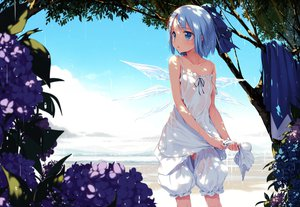 Rating: Safe Score: 258 Tags: blue_eyes blue_hair bow cirno dress flowers ke-ta loli see_through touhou tree wet wings User: gnarf1975