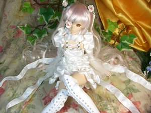Rating: Safe Score: 122 Tags: doll figure flowers goth-loli kirakishou leaves lolita_fashion photo realistic rose rozen_maiden User: gnarf1975