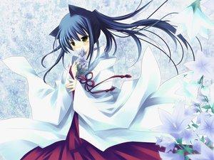 Rating: Safe Score: 77 Tags: blue_hair blush chronological japanese_clothes long_hair miko sakurazawa_izumi yellow_eyes User: 秀悟