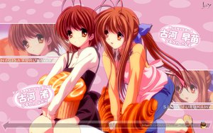 Rating: Questionable Score: 32 Tags: clannad furukawa_nagisa furukawa_sanae User: 秀悟