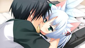 Rating: Safe Score: 43 Tags: animal_ears chitose_haruki foxgirl game_cg kobuichi rindou_ruri tenshinranman User: SciFi