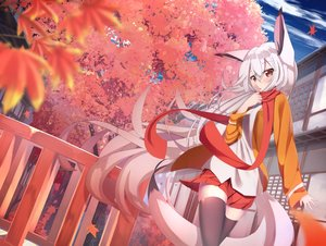 Rating: Safe Score: 50 Tags: animal_ears autumn clouds foxgirl leaves long_hair original red_eyes scarf shiro_youduki skirt tail thighhighs tree white_hair zettai_ryouiki User: luckyluna