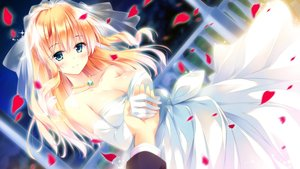 Rating: Safe Score: 172 Tags: blonde_hair blue_eyes breasts cleavage elbow_gloves ensemble_(company) game_cg gloves golden_marriage hayakawa_harui kasugano_yukariko necklace night petals wedding wedding_attire User: luckyluna