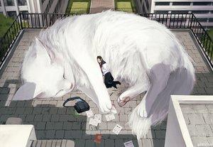 Rating: Safe Score: 53 Tags: animal arizuka_(13033303) building cat original paper rooftop seifuku sleeping User: luckyluna