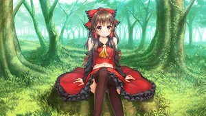 Rating: Safe Score: 333 Tags: forest hakurei_reimu japanese_clothes miko ribbons shirakawa_mayo thighhighs touhou tree User: RyuZU