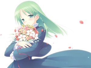 Rating: Safe Score: 12 Tags: cuffs flowers garden_(galge) petals white User: 秀悟