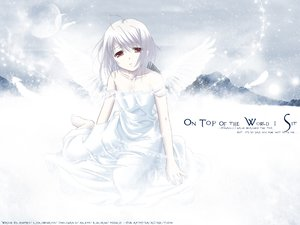 Rating: Safe Score: 3 Tags: red_eyes rino white_clarity white_hair wings wings_of_beauty User: Oyashiro-sama