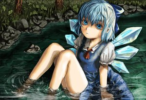 Rating: Safe Score: 53 Tags: blue_eyes blue_hair cirno fairy grass leaves lolicept short_hair touhou water wings User: PAIIS