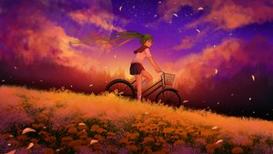 Rating: Safe Score: 47 Tags: bicycle blue_eyes blue_hair flowers grass hatsune_miku kneehighs landscape moon scenic seifuku sky stars sunset twintails vocaloid User: humanpinka
