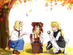 Rating: Safe Score: 39 Tags: alice_margatroid autumn fan food hakurei_reimu japanese_clothes kirisame_marisa miko pantyhose tendo_(zhazhatiantong) touhou witch User: Wiresetc