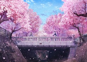 Rating: Safe Score: 44 Tags: anyotete bicycle cherry_blossoms flowers male original petals pink scenic school_uniform spring tree User: FormX