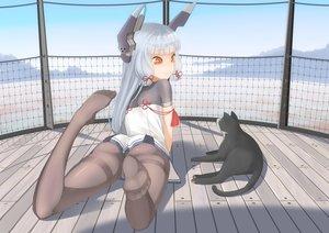 Rating: Safe Score: 140 Tags: animal bow cat gray_hair jpeg_artifacts kantai_collection long_hair murakumo_(kancolle) orange_eyes pantyhose ribbons throtem User: Flandre93