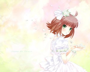Rating: Safe Score: 26 Tags: amami_haruka idolmaster User: HawthorneKitty