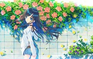 Rating: Safe Score: 88 Tags: black_hair blue_eyes choker flowers long_hair original ribbons rugo shorts User: luckyluna
