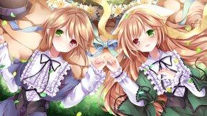 Rating: Safe Score: 77 Tags: 2girls bicolored_eyes blush bow brown_hair flowers hat long_hair nogi_takayoshi ribbons rozen_maiden short_hair souseiseki suiseiseki twins User: C4R10Z123GT