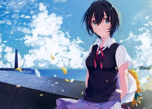 Rating: Safe Score: 52 Tags: aqua_eyes black_hair clouds flowers petals scan seifuku short_hair skirt u35 User: mattiasc02