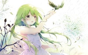 Rating: Safe Score: 85 Tags: animal bird blush dress green_eyes long_hair shiratama summer_dress twintails User: RyuZU
