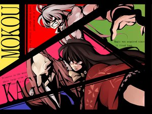 Rating: Safe Score: 20 Tags: brown_eyes brown_hair fujiwara_no_mokou houraisan_kaguya long_hair morino_hon red_eyes touhou white_hair User: PAIIS