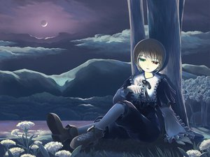 Rating: Safe Score: 9 Tags: bicolored_eyes brown_hair butterfly clouds flowers grass moon night rozen_maiden short_hair souseiseki tree User: HawthorneKitty