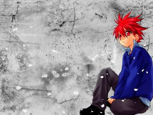 Rating: Safe Score: 15 Tags: all_male dnangel gray male niwa_daisuke petals red_eyes red_hair sugisaki_yukiru User: Oyashiro-sama