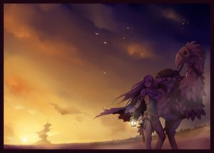 Rating: Safe Score: 83 Tags: animal bird blonde_hair blue_eyes cape celes_chere chocobo final_fantasy final_fantasy_vi long_hair scenic sky sunset torigoe_takumi User: opai