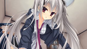 Rating: Safe Score: 113 Tags: dracu-riot! elina_olegovna_owen game_cg gray_hair long_hair muririn red_eyes twintails yuzusoft User: Maboroshi