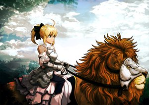 Rating: Safe Score: 65 Tags: animal blonde_hair fate_(series) fate/stay_night fate/unlimited_codes ponytail saber saber_lily sky User: Tensa
