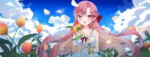 Rating: Safe Score: 50 Tags: blush braids cheli_(kso1564) clouds flowers long_hair purple_hair sky yun_rijeu User: BattlequeenYume