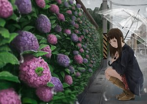 Rating: Safe Score: 31 Tags: animal boots brown_eyes brown_hair building city flowers frog long_hair original rain somehira_katsu umbrella water User: RyuZU