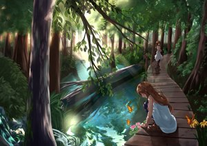 Rating: Safe Score: 45 Tags: 2girls akabane_hibame animal brown_hair butterfly dress flowers forest landscape long_hair original scenic tree water User: BattlequeenYume
