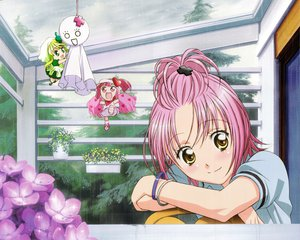 Rating: Safe Score: 24 Tags: hinamori_amu peach-pit pink_hair ran_(shugo_chara) shugo_chara suu_(shugo_chara) yellow_eyes User: Nightboyz