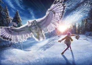 Rating: Safe Score: 37 Tags: animal bird book gloves hat snow sunset tagme tree winter User: HawthorneKitty