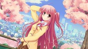 Rating: Safe Score: 49 Tags: long_hair pink_hair sakuno_kanata sakura_no_sora_to_kimi_no_koto school_uniform tsukinon User: Firenze