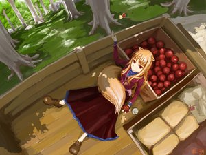 Rating: Safe Score: 110 Tags: animal_ears apple chitose_shuusui dress food forest fruit horo long_hair ookami_to_koushinryou orange_hair red_eyes tail tree wolfgirl User: rargy