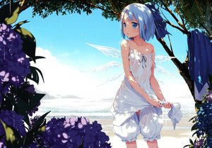 Rating: Questionable Score: 631 Tags: blue_eyes blue_hair bow cirno dress fairy flowers ke-ta loli nopan see_through touhou tree wet wings User: BattlequeenYume
