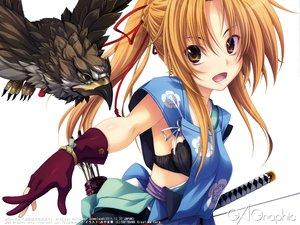 Rating: Safe Score: 273 Tags: animal bird bra brown_hair miyama-zero oda_nobuna oda_nobuna_no_yabou sword underwear weapon User: Wiresetc