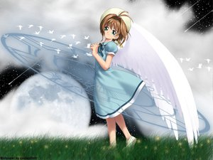 Rating: Safe Score: 11 Tags: card_captor_sakura circle_garyuu kinomoto_sakura wings User: Oyashiro-sama