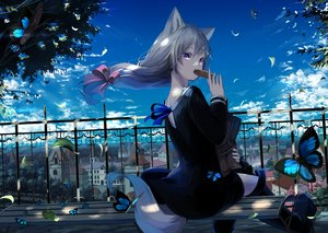 Rating: Safe Score: 114 Tags: animal_ears boots building butterfly city clouds dress food gray_hair long_hair mikisai original ponytail purple_eyes shade sky tail tree User: BattlequeenYume