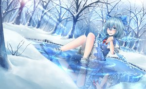 Rating: Safe Score: 35 Tags: bloomers blue_eyes blue_hair bow cirno dress mochi_(chain_csn) short_hair snow socks touhou tree water wings User: Flandre93