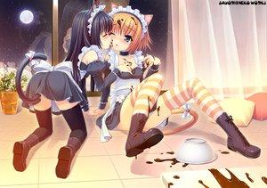 Rating: Safe Score: 261 Tags: 2girls animal_ears candy catgirl chocolate maid original sayori shoujo_ai watermark User: pantu