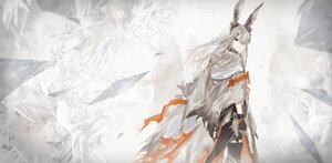Rating: Safe Score: 57 Tags: animal_ears arknights bunny_ears bunnygirl frostnova_(arknights) gloves gray_eyes gray_hair long_hair polychromatic sowb thighhighs User: Nepcoheart