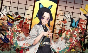 Rating: Safe Score: 28 Tags: black_hair butterfly japanese_clothes katana kimetsu_no_yaiba kimono kochou_shinobu purple_eyes short_hair sword weapon yomena User: sadodere-chan