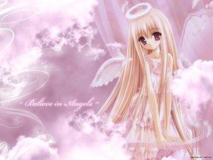 Rating: Safe Score: 86 Tags: angel halo pink see_through tinkle wings User: Oyashiro-sama