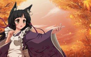 Rating: Safe Score: 63 Tags: animal_ears autumn black_hair blush brown_eyes foxgirl japanese_clothes long_hair maid original shira-nyoro sunset tagme tree User: opai
